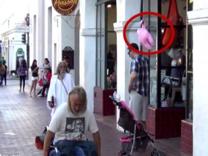 Fly Away Baby Prank