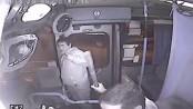 Chile Bus Driver purse snatcher Beatdown